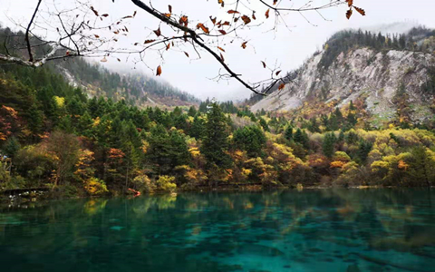 Clear water in Jiuzhaigou.jpg